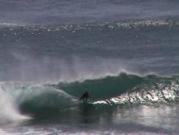 Level 3 Elite Surfing Coach